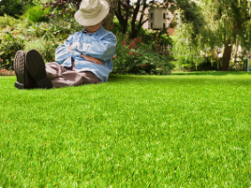 Artificial Grass Autumn Special Offers | Permaroof News
